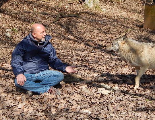 Kurt kotrschal il mio incontro con lo scienziato dei lupi video